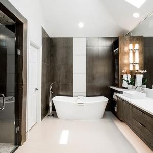 Unviersal-Design---Bath---Euro